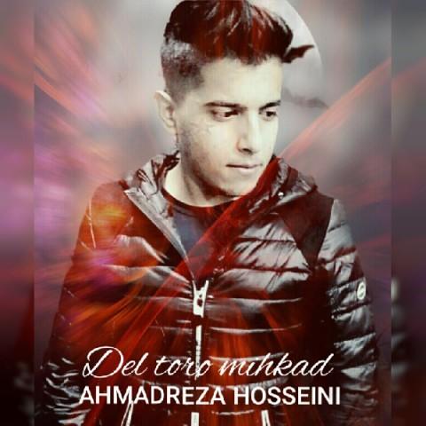Download Music احمدرضا حسینی دل تورو میخواد