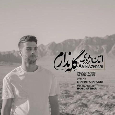 Download Music امین اژدری گله ندارم