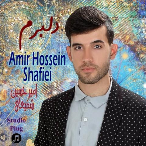 Download Music امیرحسین شفیعی دلبرم