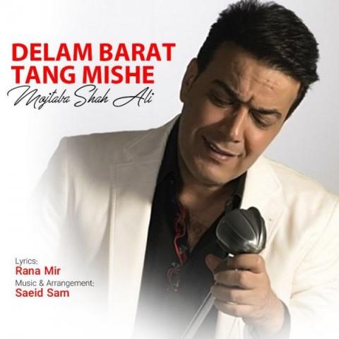 Download Music مجتبی شاه علی دلم برات تنگ میشه