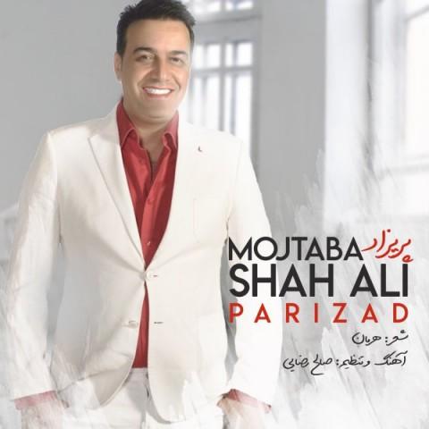 Download Music مجتبی شاه علی پریزاد