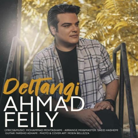 Download Music احمد فیلی دلتنگی