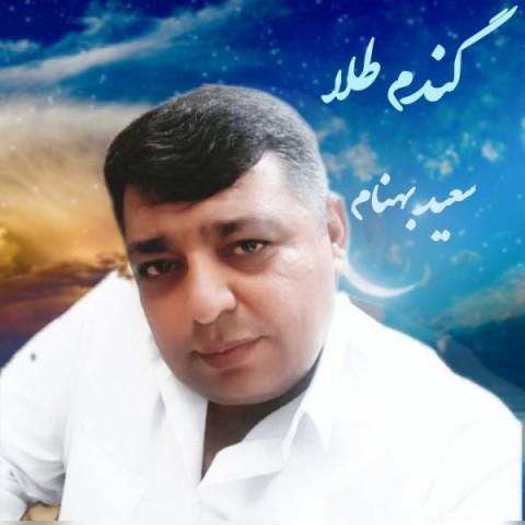 Download Music سعید بهنام گندم طلا