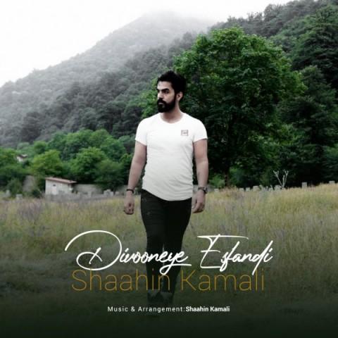 Download Music شاهین کمالی دیوونه ی اسفندی