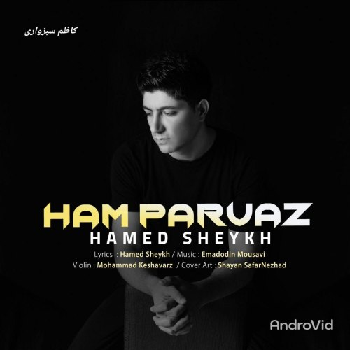 Download Music حامد شیخ هم پرواز