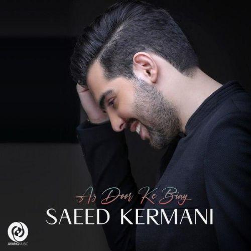 Download Music سعید کرمانی از دور که بیای