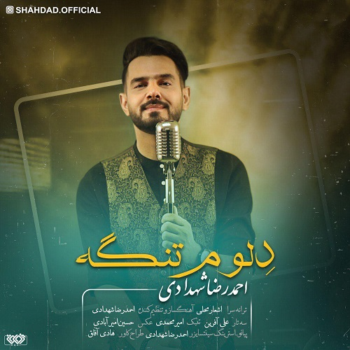 Download Music احمدرضا شهدادی دِلوم تنگه