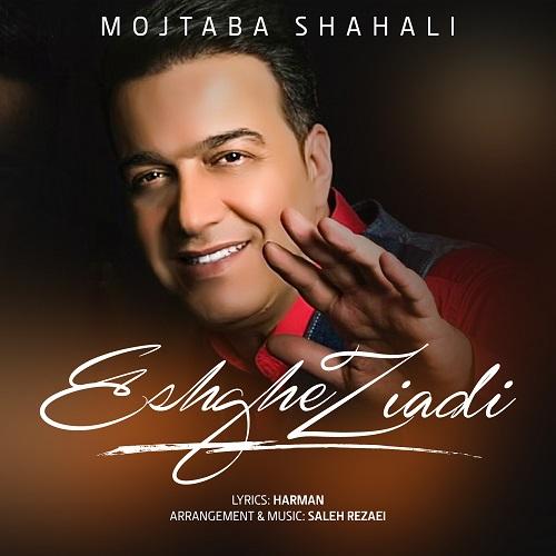 Download Music مجتبی شاه علی عشق زیادی