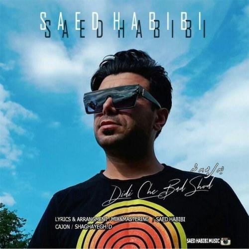 Download Music ساعد حبیبی دیدی چه بد شد