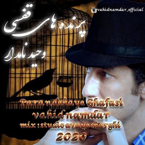 Download Music وحید نامدار پرنده های قفسی