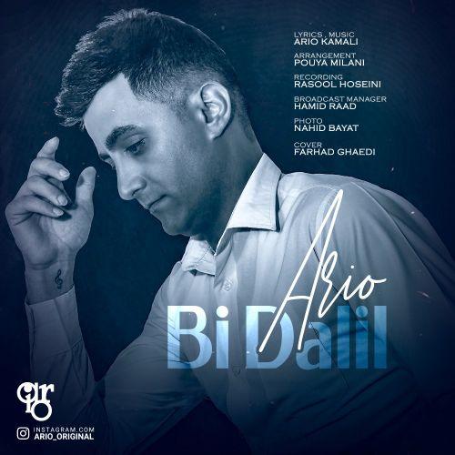 Download Music آریو بی دلیل