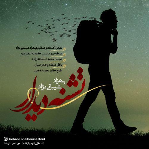 Download Music بهزاد شیبانی نژاد تشنه دیدار