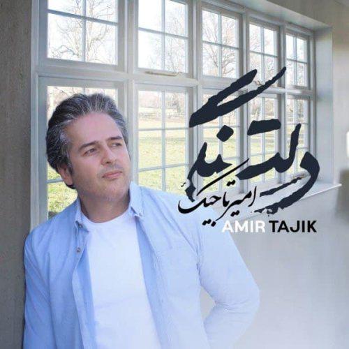 Download Music امیر تاجیک دلتنگی