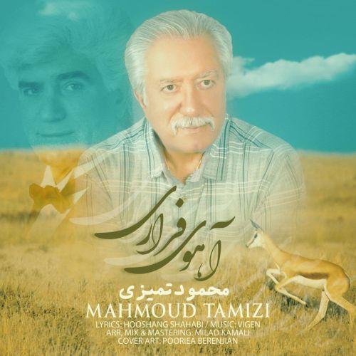 Download Music محمود تمیزی آهوی فراری