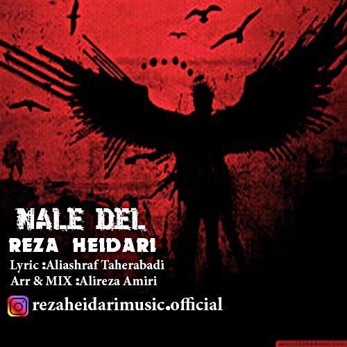 Download Music رضا حیدری ناله دل