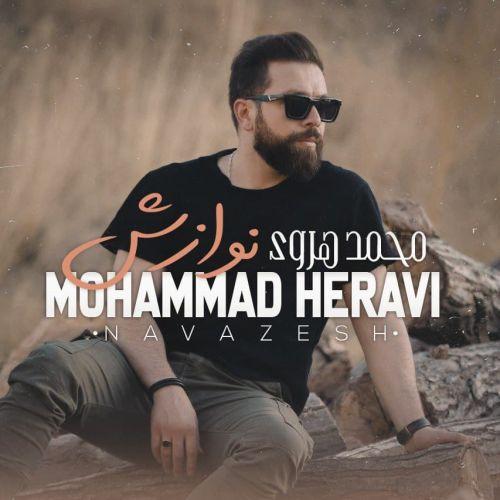 Download Music محمد هروی نوازش