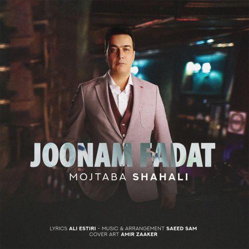 Download Music مجتبی شاه علی جونم فدات