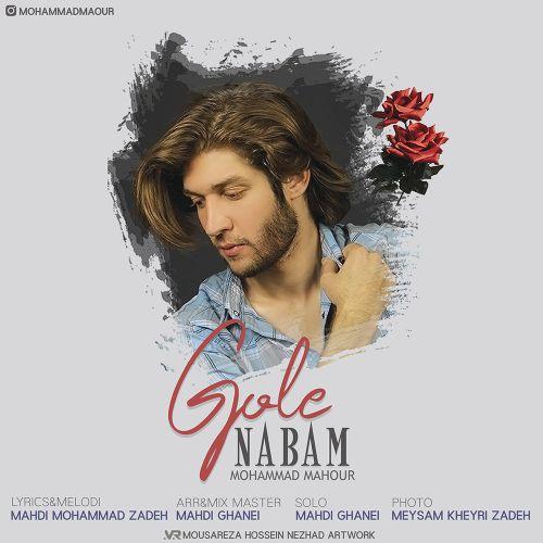 Download Music محمد ماهور گل نابم